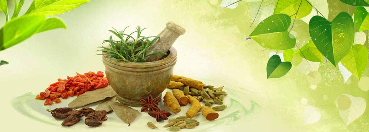 Kailash Institute of Naturopathy Ayurveda and Yoga Centre at Noida