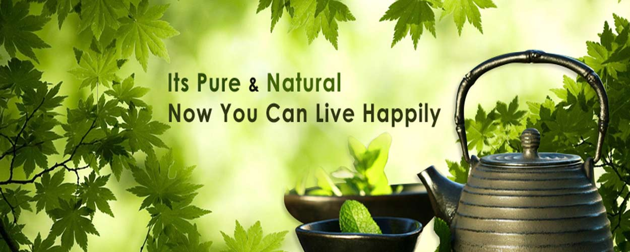 Sanjeevani Naturopathy Treatment Centre and Research in Bodh Gaya
