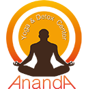 Ananda Yoga and Detox Center in Surat Thani Ayurvedic Centres Ananda Yoga and Detox Center in Surat Thani