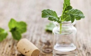 10 Incredible Uses of Peppermint Oil for Health and Beauty Ayurvedic Centres Best Ayurvedic Centres | Yoga Therapies | Wellness Treatments